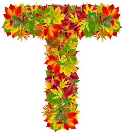 T, autumn alphabet isolated on white  photo