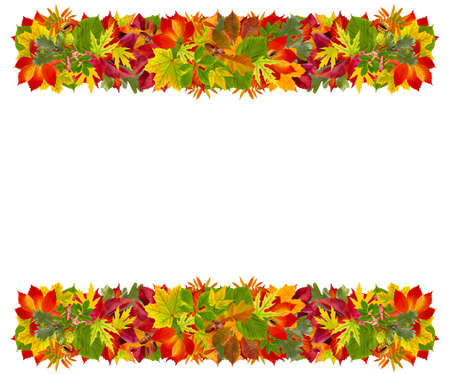 Autumn frame with  colorful leaves  Stock Photo - 16267462