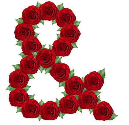 Ampersand symbol  made from red roses and green leaves  isolated on a white background photo