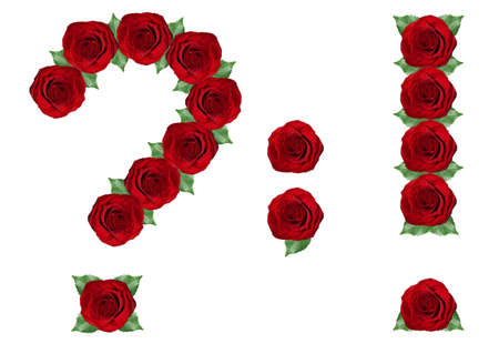 Punctuation marks made from red roses and green leaves isolated on a white background photo