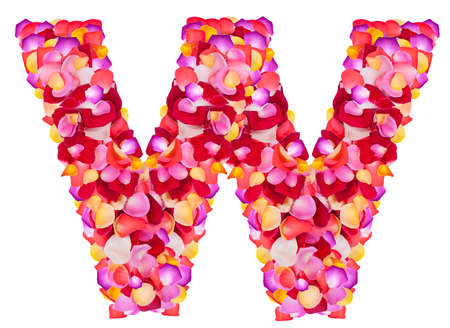 Letter W made from colorful petals rose,  isolated on a white background  photo