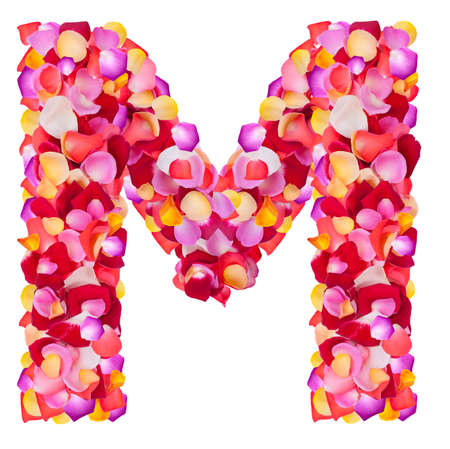 Letter M  made from colorful petals rose,  isolated on a white background  photo