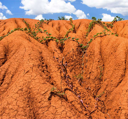 background with soil erosion  photo