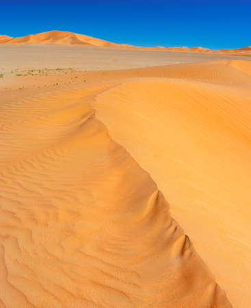 oman background: Oman desert landscape with blue sky  Dunes background