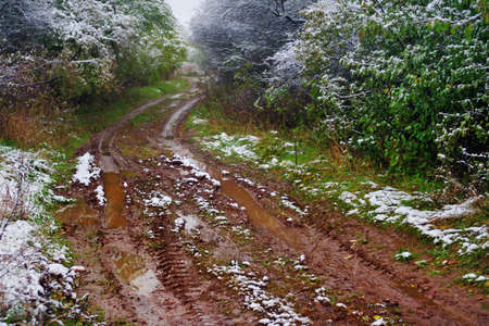 mud and snow: Off-road track   in the autumn forest with snow
