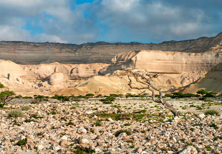 wadi: Landscape in Wadi Shuwaymiyah, Oman Stock Photo