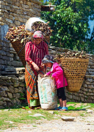 ANNAPURNA AREA, NEPAL - MARCH 26: Nepalese woman and daughter with baskets on the road on March 26, 2014 in Annapurna District, Nepal.