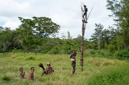 sektor: NEW GUINEA, INDONESIA -DECEMBER 28: Unidentified warriors of a Papuan tribe in traditional clothes are having a demonstration of war skills in New Guinea Island, Indonesia on December 28, 2010