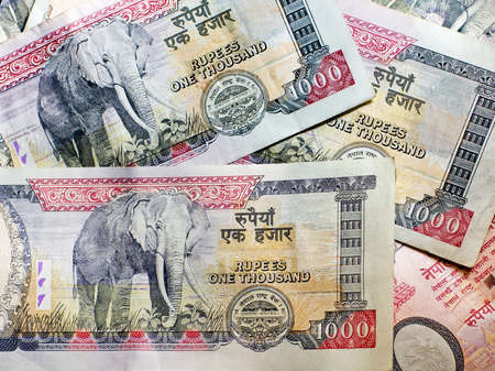 rupee: Nepalese banknotes 1000 Rupees.