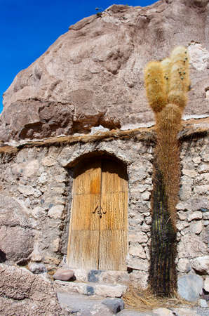 peyote: Incahuasi island in Salar de Uyuni, Bolivia Stock Photo