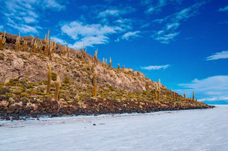 salar de uyuni: Incahuasi island in Salar de Uyuni, Bolivia Stock Photo