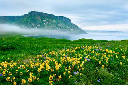 kuril: landscape at Paramushir Island, Kuril Islands, Russia Stock Photo