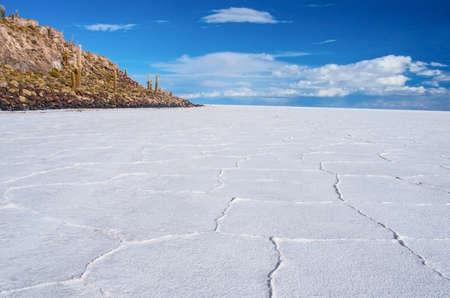 incahuasi: Incahuasi island in Salar de Uyuni, Bolivia Stock Photo