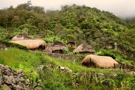 A traditional village in Papua, Indonesia Standard-Bild