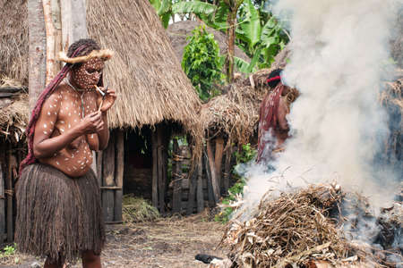 sektor: PAPUA PROVINCE, INDONESIA -DEC 28: Unidentified man of a Papuan tribe uses an earth oven method of cooking pig, at New Guinea Island, Indonesia on December 28, 2010