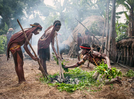 PAPUA PROVINCE, INDONESIA -DEC 28: Unidentified man of a Papuan tribe uses an earth oven method of cooking pig, at New Guinea Island, Indonesia on December 28, 2010