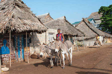 locals: LAMU, KENYA - 19 JAN: Locals using a donkey for transport in Lamu on Jan 19, 2013. Editorial