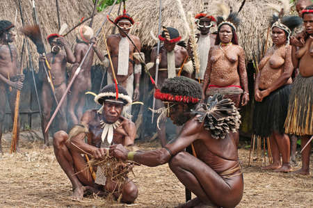 dani: PAPUA PROVINCE, INDONESIA -DEC 28: Unidentified members of a Papuan tribe at New Guinea Island, Indonesia on December 28, 2010
