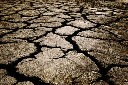 barrenness: cracked ground for background