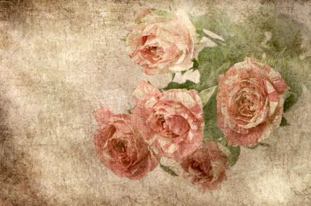 art floral  romantic vintage rose background