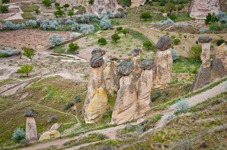 phallic: Rock-mushrooms, spectacular landscape of fairy chimneys carved in volcanic tuff by erosion. Cappadocia, Turkey