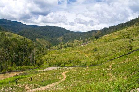 Nuova Guinea: rural landscape in the mountains, New Guinea