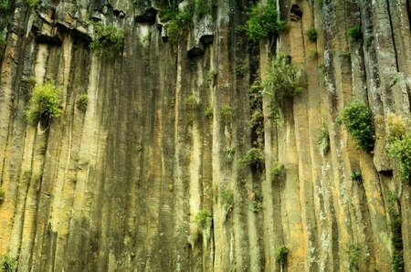 ocampo:  Basaltic Prisms of Santa Maria Regla. Tall columns of basalt rock in canyon, Huasca de Ocampo, Mexico