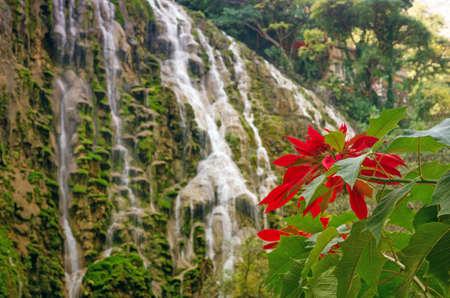 gloria: Beautiful Tolantongo caves (Grutas Tolantongo), Hidalgo. Mexico