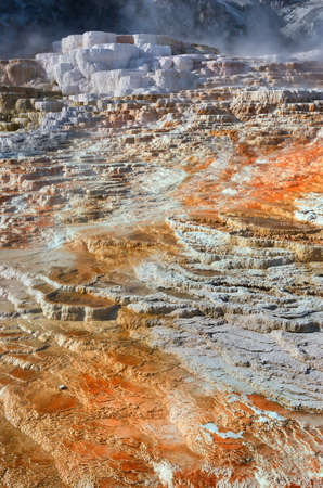 Mammoth Hot Springs in Yellowstone National Park. USA Stock Photo