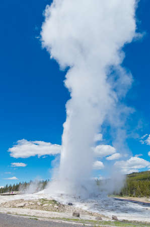 erupting: Castle Geyser in Yellowstone National park, Wyoming, USA