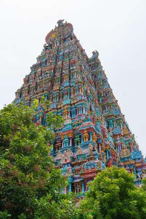 Reliëf van Menakshi Temple, Madurai in de staat Tamil Nadu in India Stockfoto - 85334484