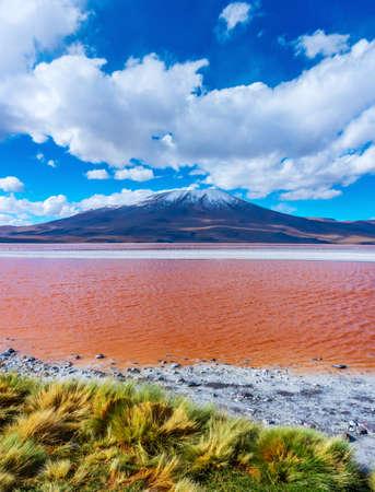 laguna Colorada , Uyuni, Bolivia