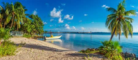 Tropisch strand in de Caribische zee, Yucatan, Mexico.