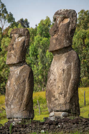 Ahu Akivi in Rapa Nui (or Easter Island) in the Valparaíso Region of Chile. The site has seven moai, all of equal shape and size, and is also known as a celestial observatory. Stock Photo