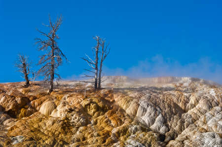 Mammoth Hot Springs in Yellowstone National Park. USA Banque d'images