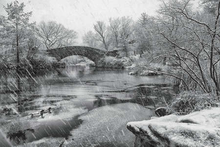 Snowfall in Central park. Gapstow bridge during winter, Central Park New York City. USA. White and black image