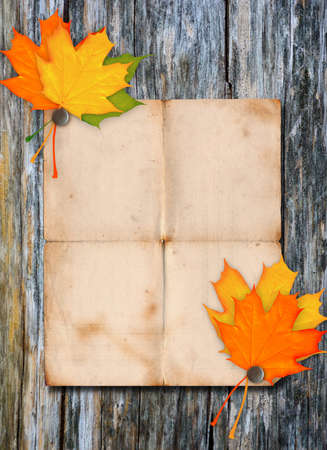 Paper poster on a wood wall Stock Photo - 14833325