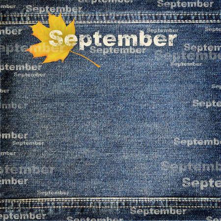 Denim scrapbook background for planing