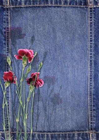 Denim achtergrond met bloem Stockfoto - 14835492