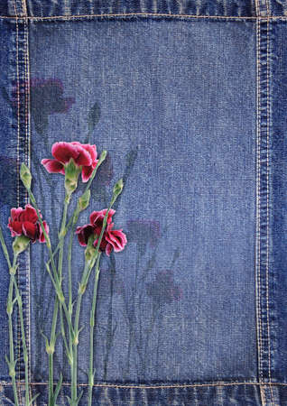 torn jeans: Denim background with flower Stock Photo