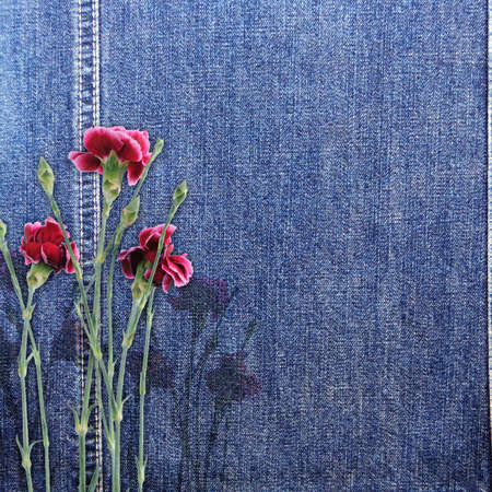 Denim background with flower photo