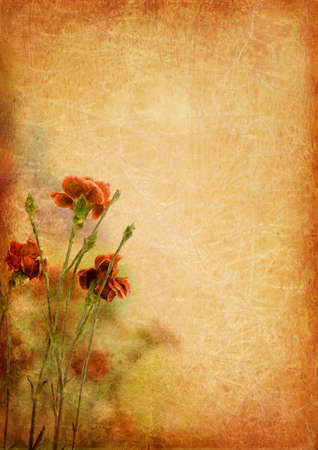 flower age: Vintage background with carnation flowers Stock Photo