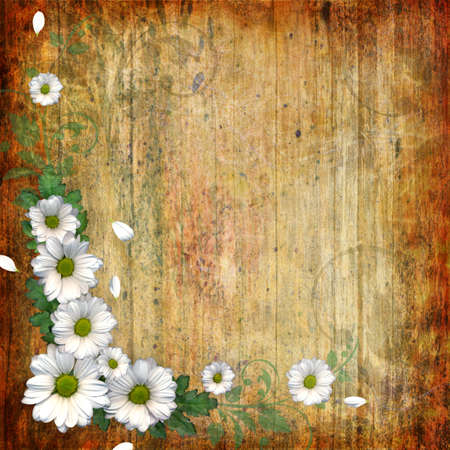 alienated: Grunge abstract background with chamomile