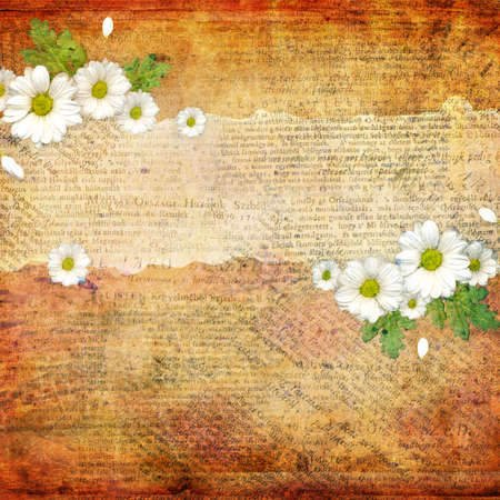 Grunge abstract background with chamomile photo