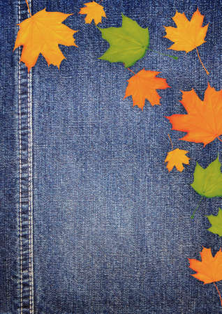 Denim scrapbook background with autumn leaves Stock Photo - 15163800