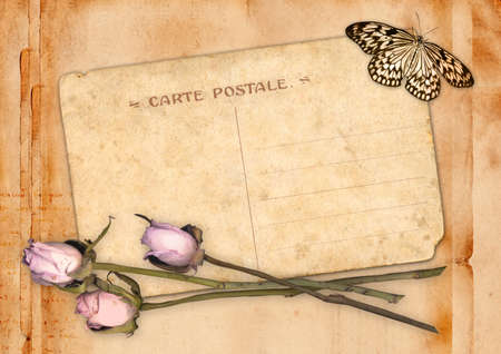 correspond: Old postcard with roses and butterfly