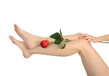 Female legs with rose isolated on white background