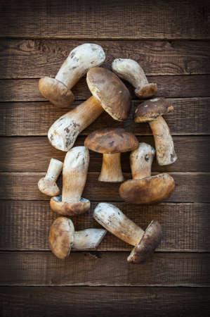 Summer mushrooms on a wooden background closeup
