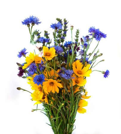 champ de fleurs: Bouquet des oreilles et sur le terrain fleurs isol� sur fond blanc