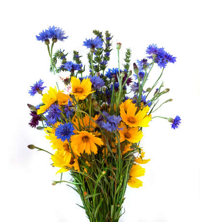 field of flowers: Bouquet from ears and field flowers isolated on white background